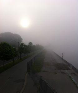 yourewelcomeCA_fog_Toronto_lakeshore_4_sun